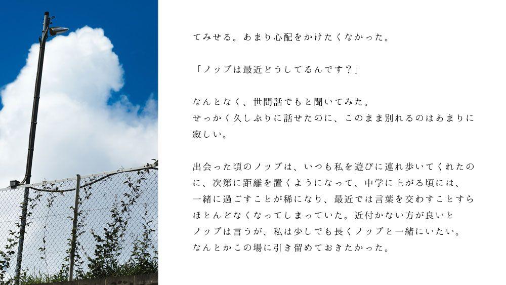 ノブ沖ss桜のリング1-4