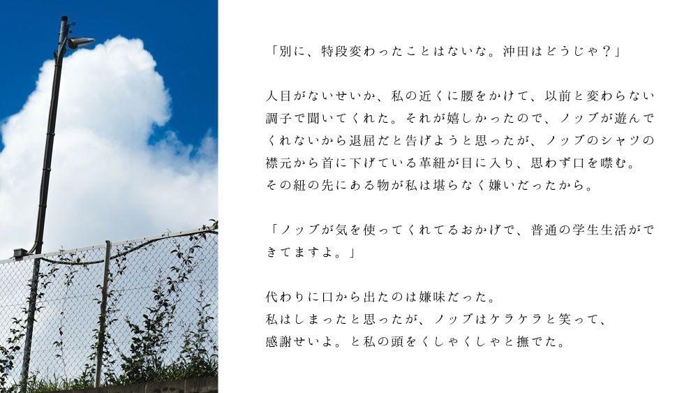 ノブ沖ss桜のリング1-5