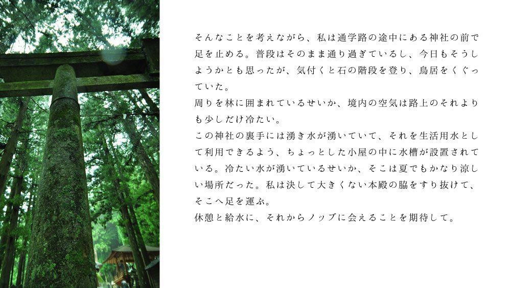 ノブ沖ss桜のリング2-5