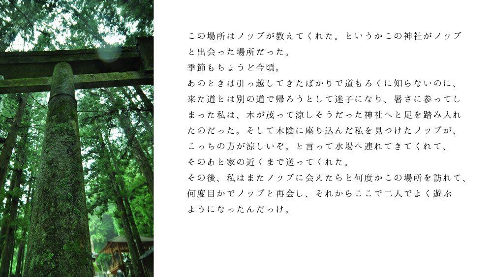 ノブ沖ss桜のリング2-6